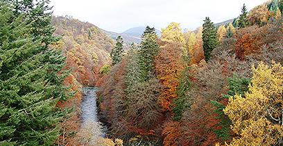 River Tummel near Pitlochry